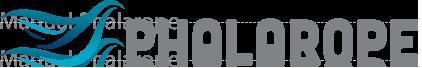 Phalarope - Motor de Reserva